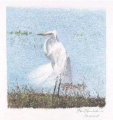 "Egret in the Wind 10""x10"""