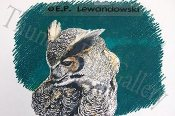 "Great Horned Owl 10""x11"""